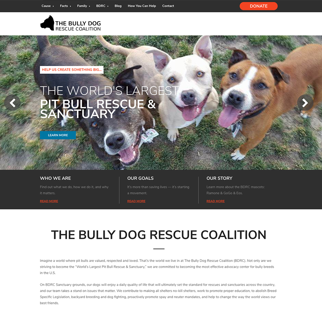 Bully Dog Rescue Coalition