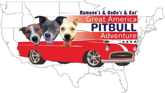 Great America Pit Bull Adventure